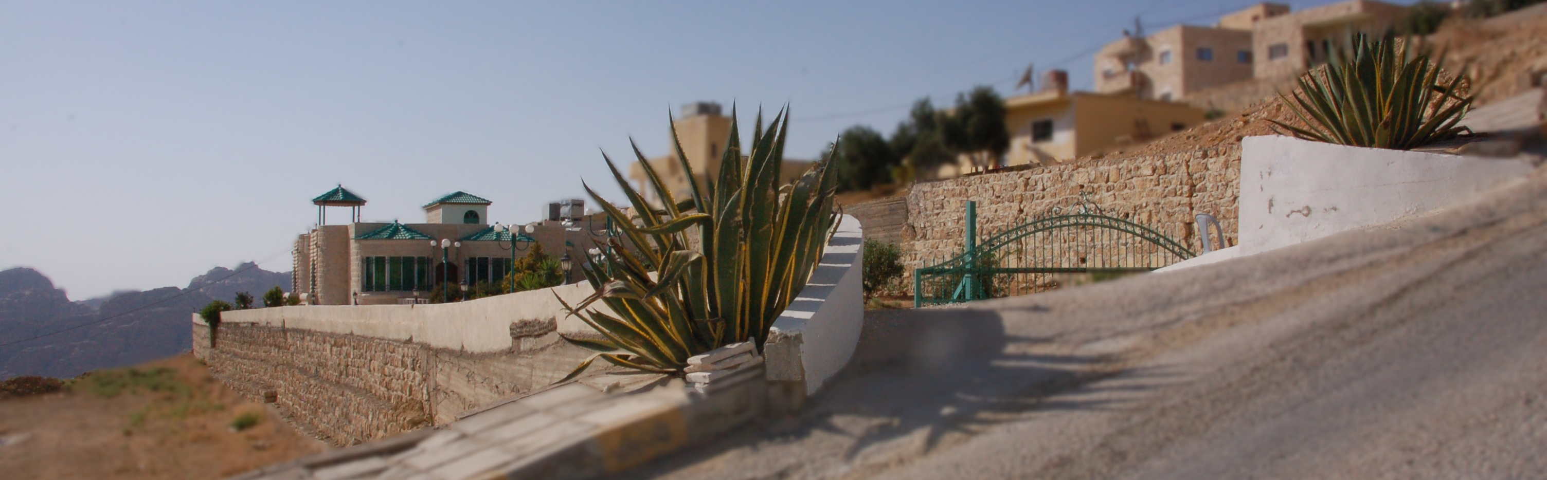 Entrance to B and B Petra Fig Tree Villa with agaves