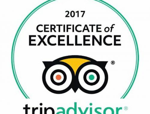 2017 TA certificate of excellence