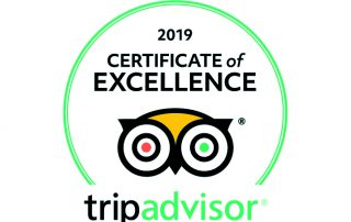 Tripadvisor logo certificate of Excellence 2019 for bed and breakfast Petra Fig Tree Villa